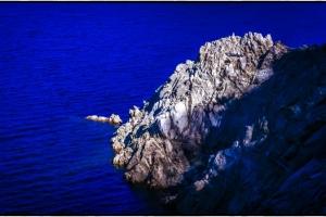 Marea Albastra